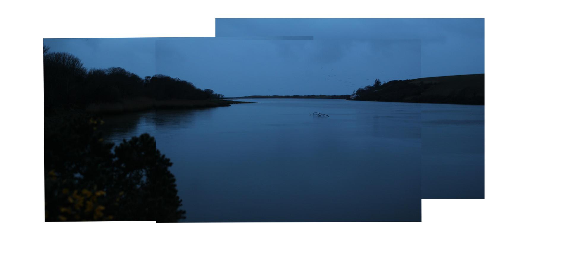 Estuary 5.jpg