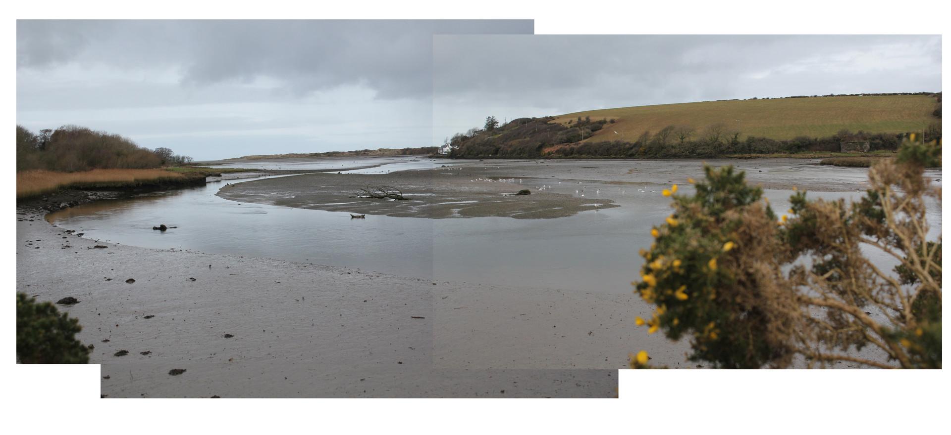 Estuary 1.jpg