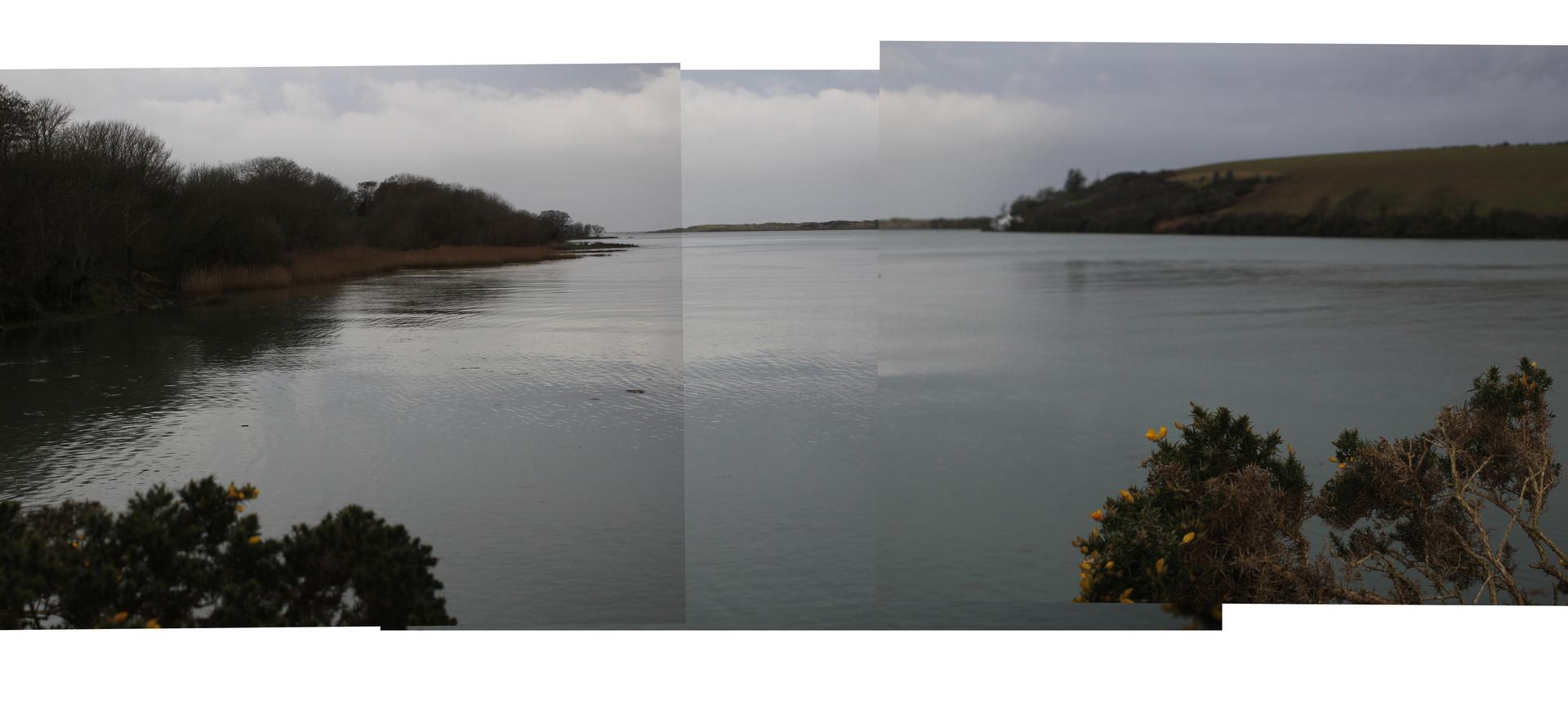 Estuary 2.JPG