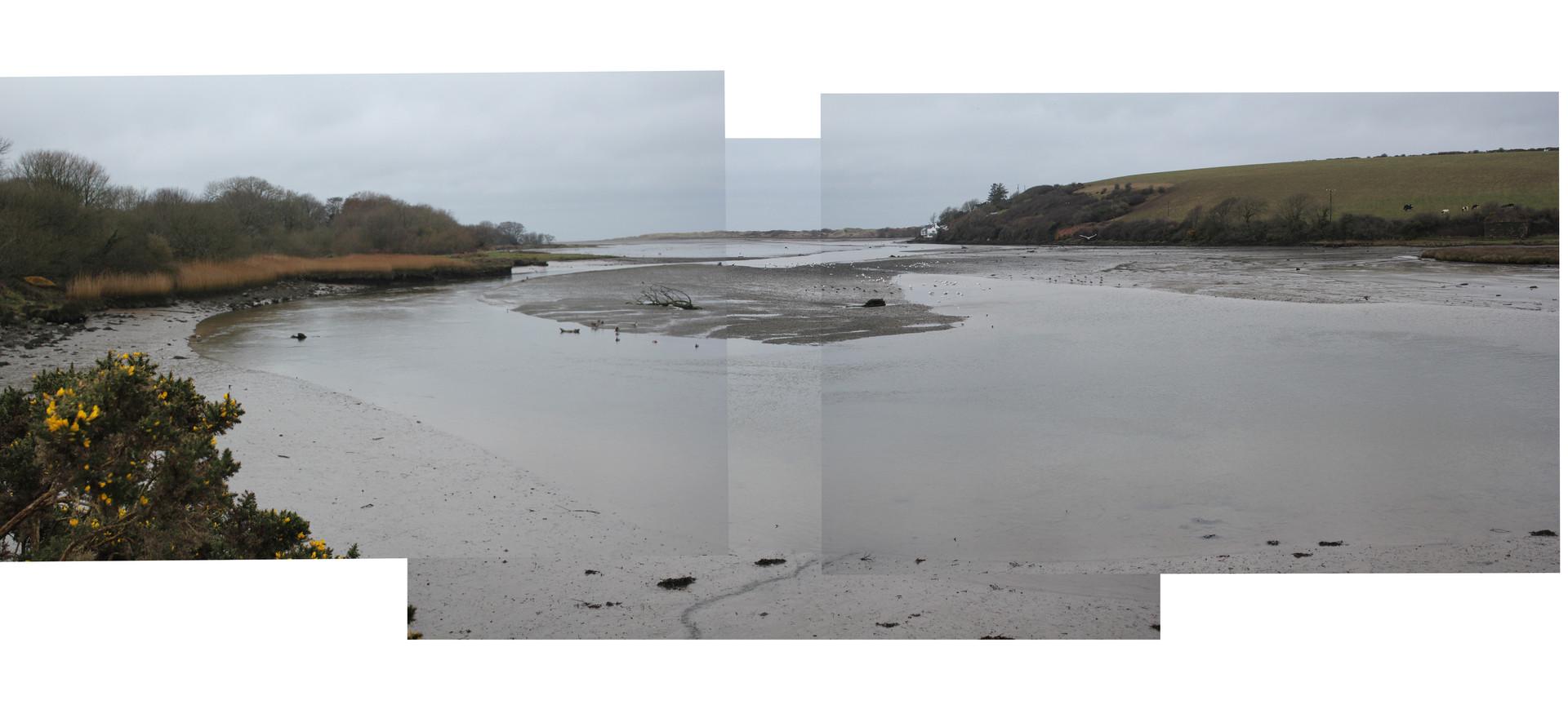 Estuary 3.jpg