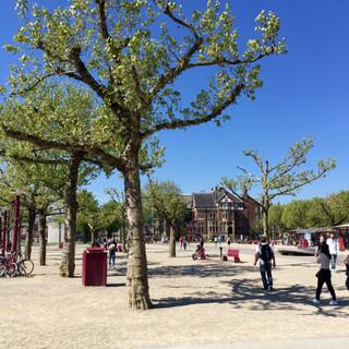 """Sunny Day"" - Amsterdam, Netherlands"
