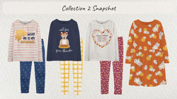 Collection 2- Snapshot