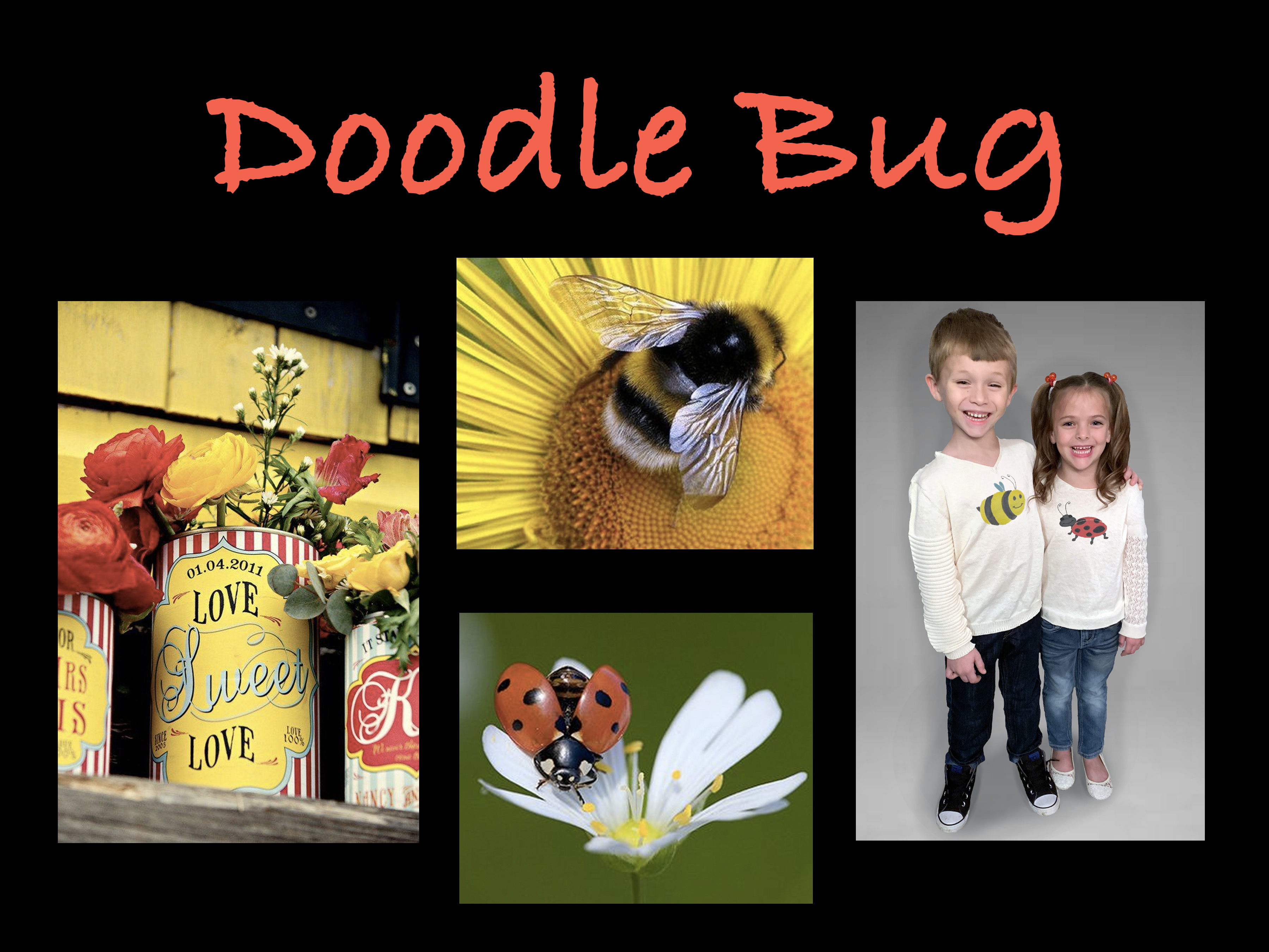 doodle bug board 1