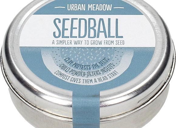 Seedball - Urban Meadow