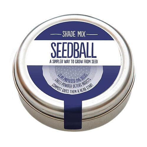 Seedball - Shade Mix
