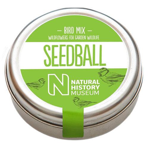 Seedball - Bird Mix
