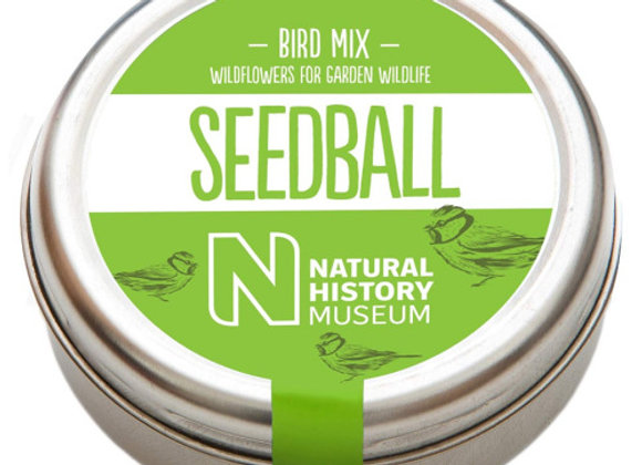 Seedball - Bird Mix