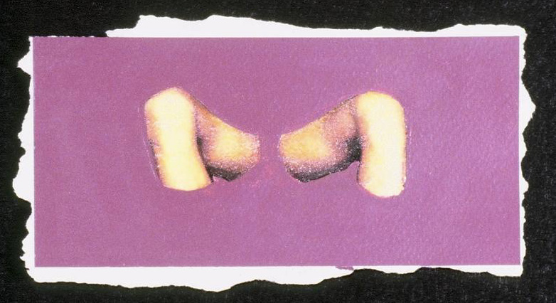 msp2004b.jpg
