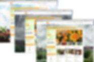 THD_backgrounds.jpg