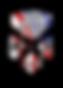 Market Recon Logo USA July 2019.png