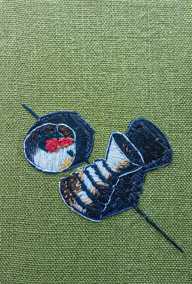 Observational Embroidery
