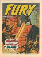 Fury 14