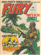 Fury 18