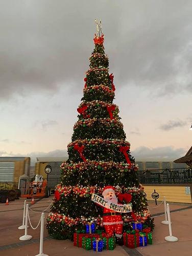 2020 Christmas Tree Downtown.jpg
