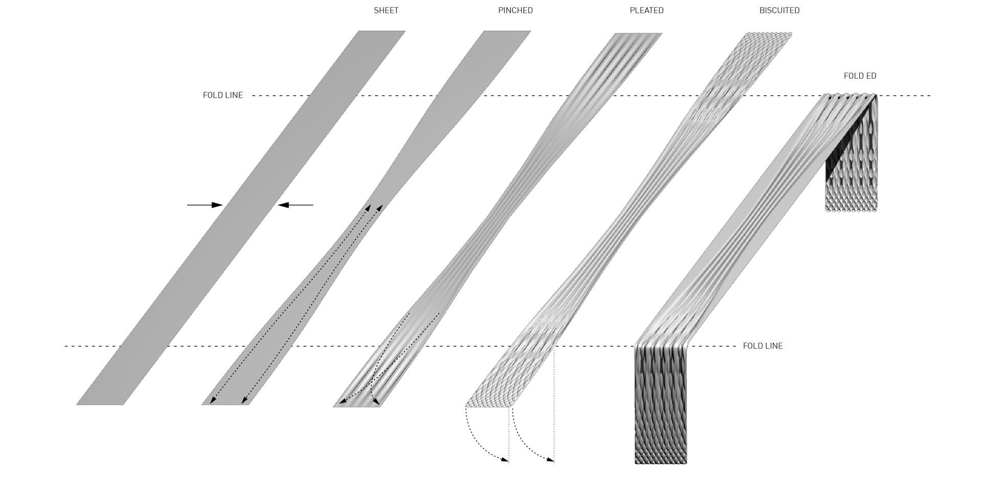 Surface Evolution.jpg