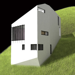 Extroverted House
