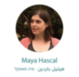maya 03-01.jpg