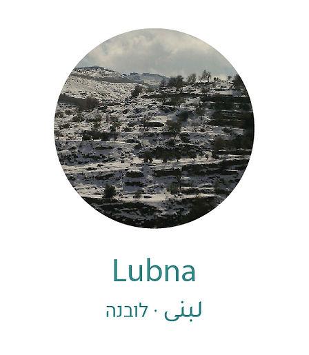 lubna-02.jpg
