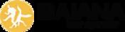 logo Baiana tour operator.png
