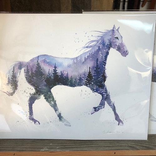 Night Stallion Art Print