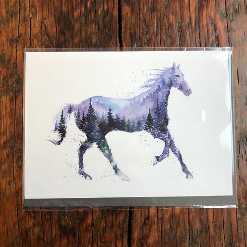 Night Stallion Art Card