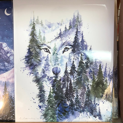 Young Wolf Art Print