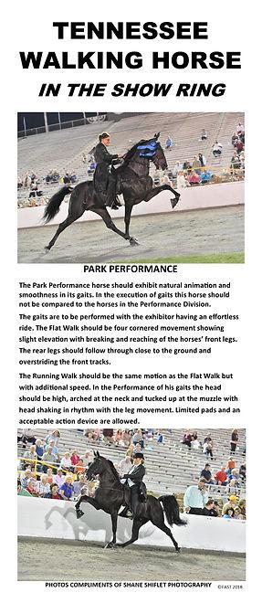 Park Performance.jpg
