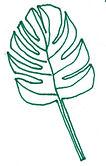 leaf big .jpg