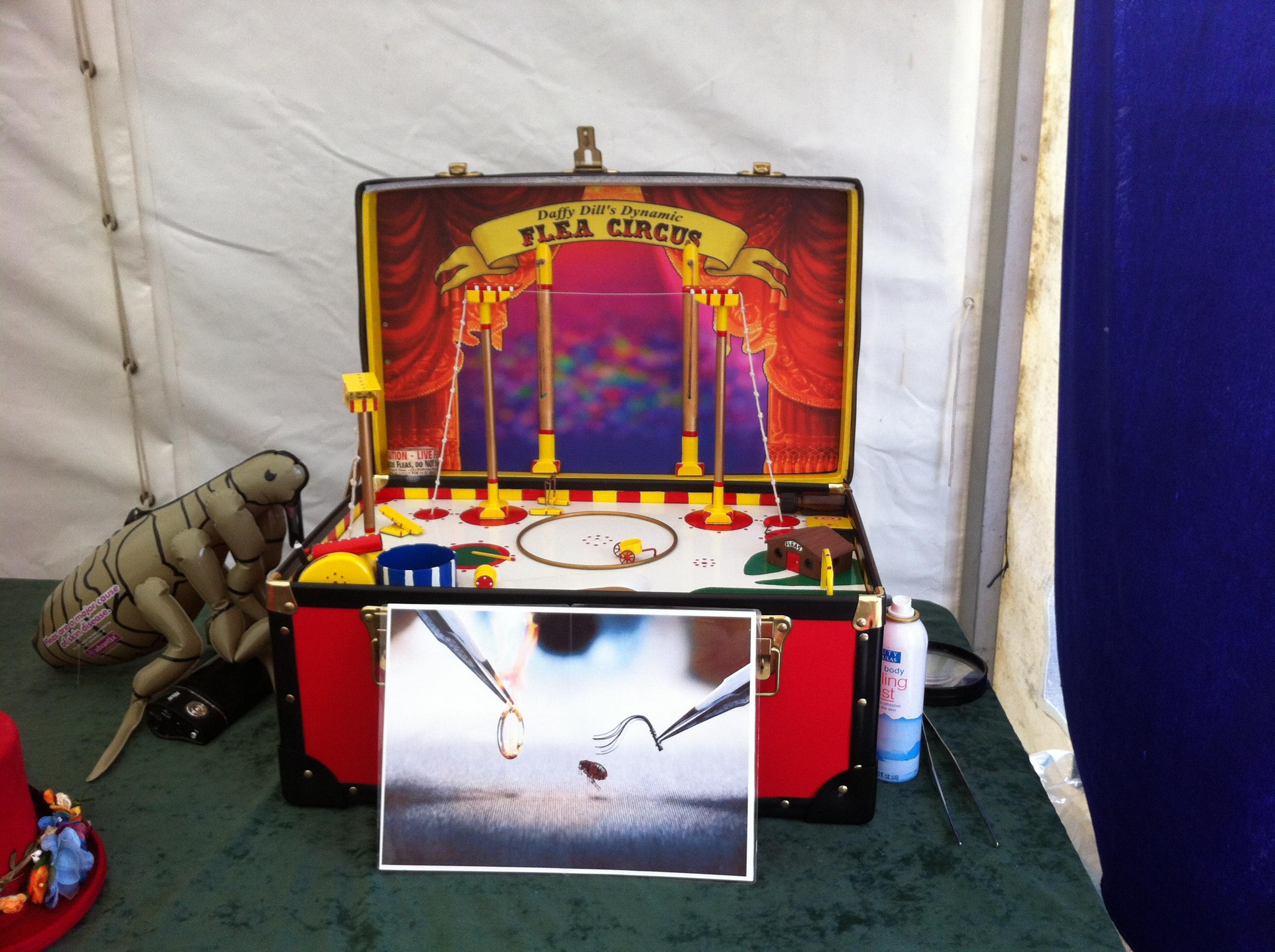 flea circus sideshow