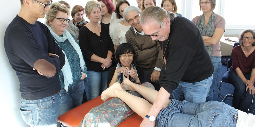 Master Tung's Akupunktur mit Prof. Hans-Georg Ross