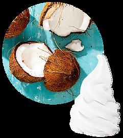 LC coconut milk.png