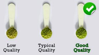 เกล็ดความรู้ ชาเขียว มัทฉะ (Matcha Green Tea)