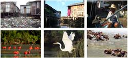 Vila Gilda beelden