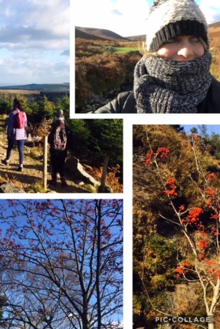 The many benefits of a good ole mountain hike!