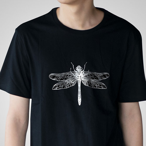 The Bug Collection - Praying Mantis