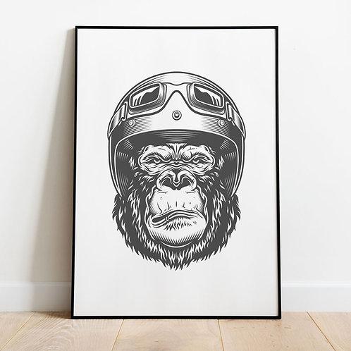Serious Gorilla
