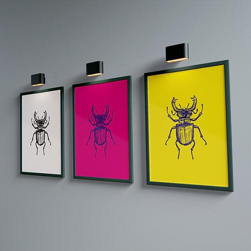 Beetle 2 Magenta - Bug Collection