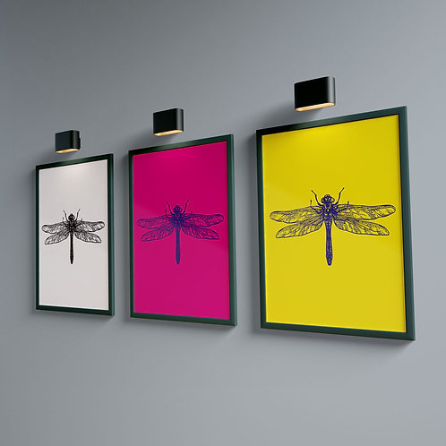 Dragonfly Magenta - Bug Collection
