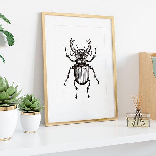 Beetle 2 Branco - Bug Collection