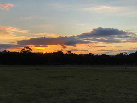 Another sunset at Gisborne