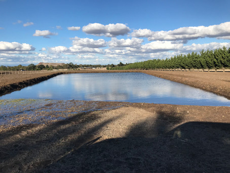 Our second new dam