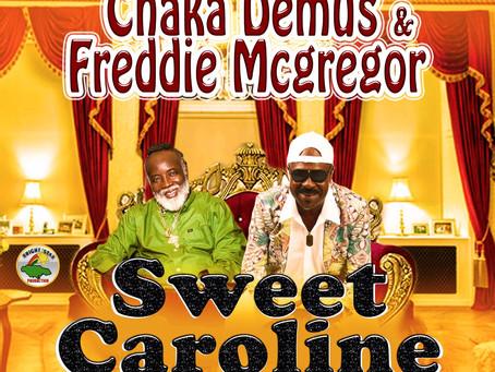 Chaka Demus and Freddie Mcgregor are looking for Sweet Caroline