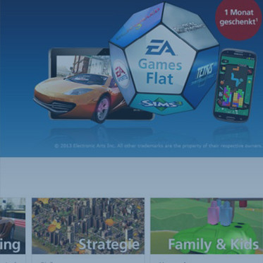 """""""EA Games Flat"""" Product Management 
