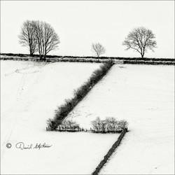 Zig Zag fence in snow
