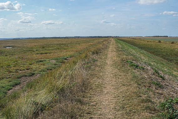 Embankment-marsh-cultivated fields