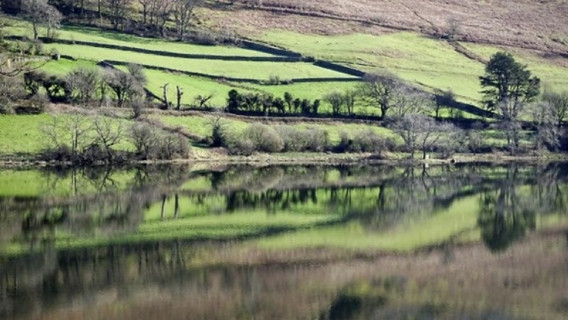 Loweswater still