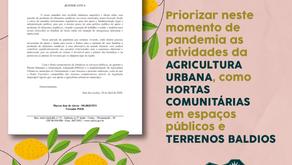 Indicações - Priorizar neste momento de pandemia as atividades da Agricultura Urbana.