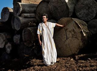 Amazon Rainforest loses a couragous friend to murderous illegal loggers