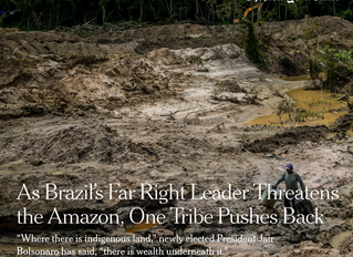 [ARTICLE] Leadership changes and illegal mining put increasing pressure on Amazon rainforest