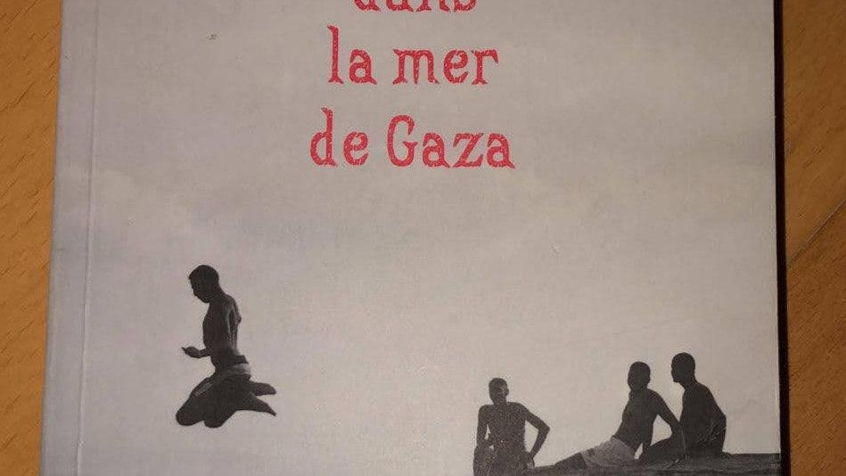 Une bouteille dans la mer de Gaza (Valérie Zenatti)